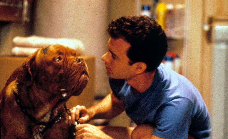 Dog Movies Like Turner And Hooch